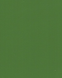 Lacobel REF 0667 Zieleń Dżungli